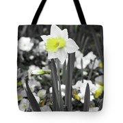 Dallas Daffodils 54 Tote Bag