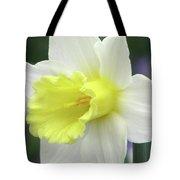 Dallas Daffodils 55 Tote Bag