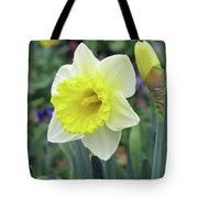 Dallas Daffodils 64 Tote Bag