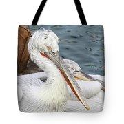 Dalmatian Pelican #3 Tote Bag