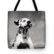 Dalmation Puppy Tote Bag