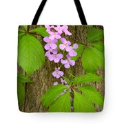 Dame's Rocket Wildflowers And Creeping Vines Tote Bag