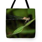 Damselfly Tote Bag