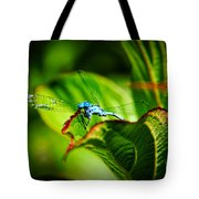 Damselfly Tote Bag