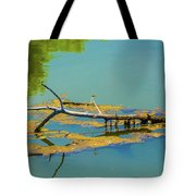 Damselfly On A Lake Tote Bag by Tom Potter