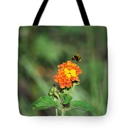 Dance Of The Bumble Bee Tote Bag