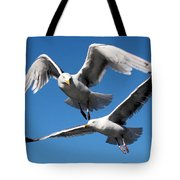 Aerial Dance Of The Seagulls Tote Bag