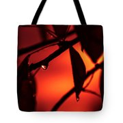 Dance On The Edge Of Time Tote Bag