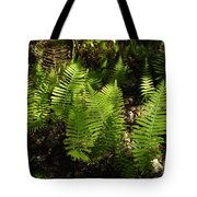Dancing Ferns Tote Bag