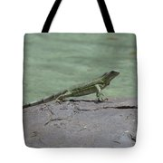 Dancing Iguana On Rocks Along The Water's Edge Tote Bag