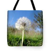 Dandelion Clock Tote Bag
