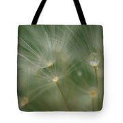 Dandelion Dew Two Tote Bag