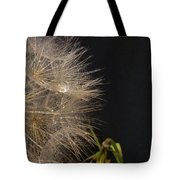 Dandelion Fifty Eight Tote Bag