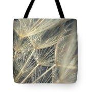 Dandelion Fifty Tote Bag