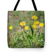 Dandelion Flowers Tote Bag