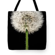 Dandelion Gone To Seed Tote Bag