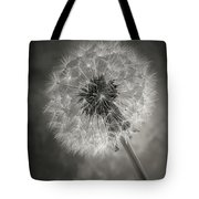 Dandelion In Black And White Tote Bag