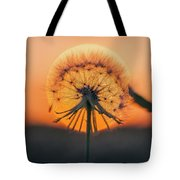 Dandelion In The Sun Tote Bag