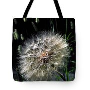 Dandelion Seedball Tote Bag