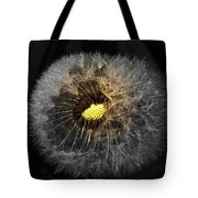 Dandelion Spotlight Tote Bag