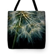 Dandelion Thirty Eight Tote Bag