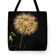 Dandelion Thirty Nine Tote Bag