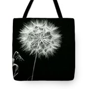 Dandelion Thirty Six Tote Bag
