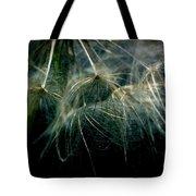 Dandelion Thirty Two Tote Bag