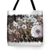 Dandelion Wishes Tote Bag by Myrna Migala