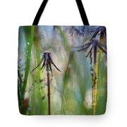 Dandelions Close-up Tote Bag