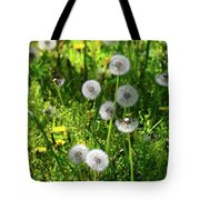 Dandelions On The Maryland Appalachian Trail Tote Bag