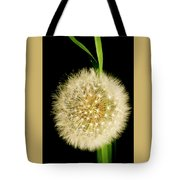 Dandelion's Seed Head. Tote Bag
