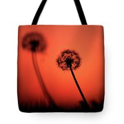 Dandelions Silhouettes At Sunset Tote Bag