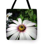 Dandy Daisy Tote Bag