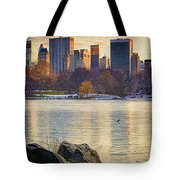 Danger - Thin Ice Tote Bag