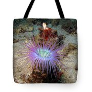 Dangerous Underwater Flower Tote Bag