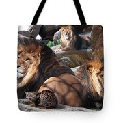 Daniel In The Lion Tote Bag