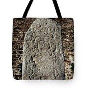 Danzantes Stone Tote Bag