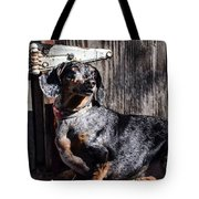 Dapple Dachshund Tote Bag