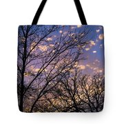 Dappled Sunset-1547 Tote Bag