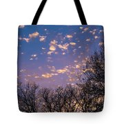 Dappled Sunset-1548 Tote Bag