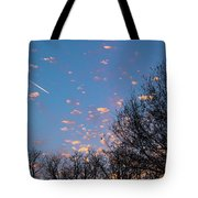 Dappled Sunset-1565 Tote Bag