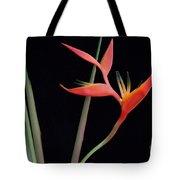 Daring Heliconia Acuminata Tote Bag