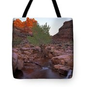 Dark Canyon Creek Tote Bag