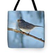 Dark-eyed Junco Or Snowbird - Junco Hyemalis Tote Bag