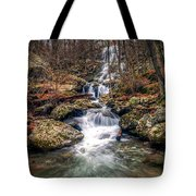 Dark Hollow Fall Tote Bag