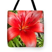 Dark Orange Red Lily Tote Bag