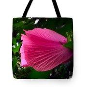 Dark Pink Beauty Tote Bag
