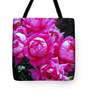 Dark Pink Roses Tote Bag