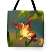 Dark Red Day Lily With Sun Shining Through I Abstract I Tote Bag
